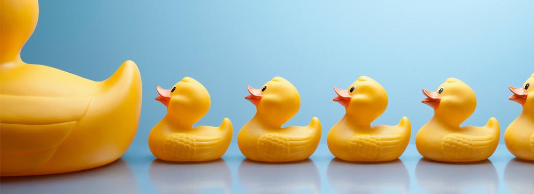 一列黃色的橡膠鴨子